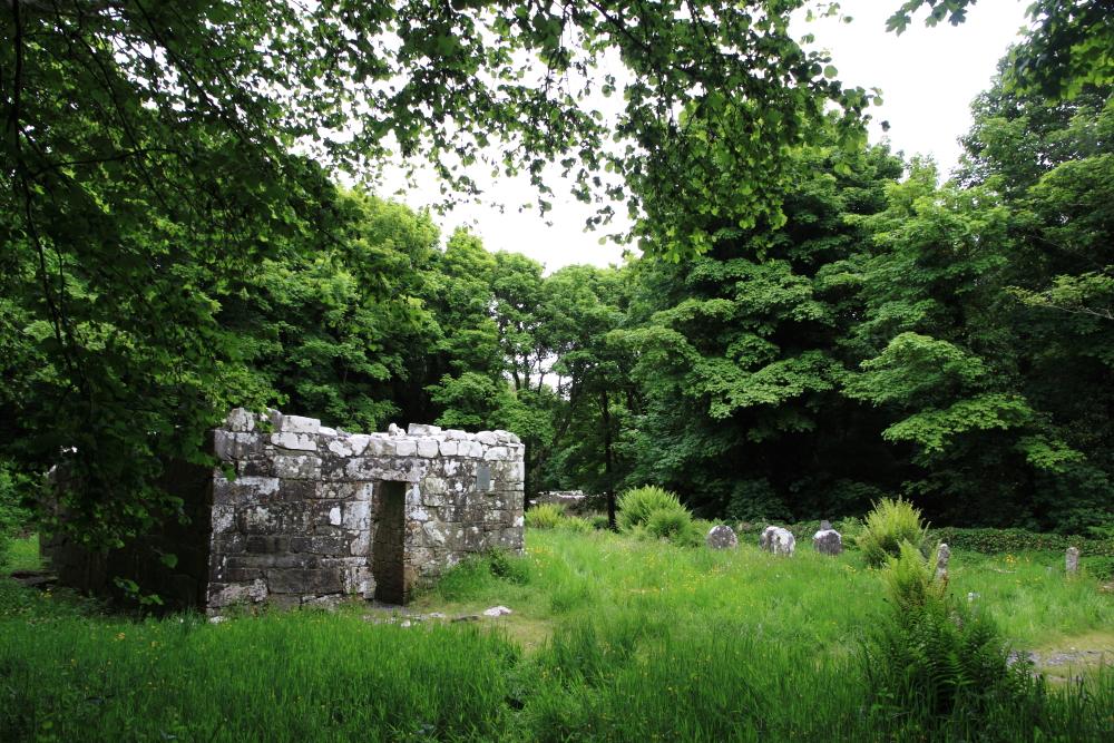 Inchagoill, Maflies, Lough Corrib, Oughterard, Galway, Ireland