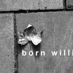 Song: Born Willing